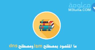 ما المقصود بمصطلح ism ومصطلح dns