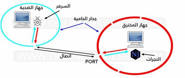 تحتوي هذه الصورة على سمة alt فارغة; اسم الملف هو bvbb.jpg