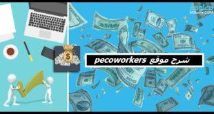 شرح موقع picoworkers
