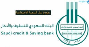 نموذج بنك التنمية الاجتماعية